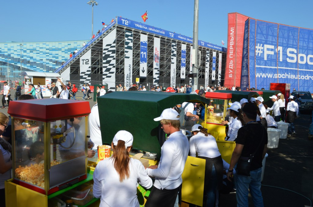 141010 Гонки Гран При Формула 1 в Сочи 08